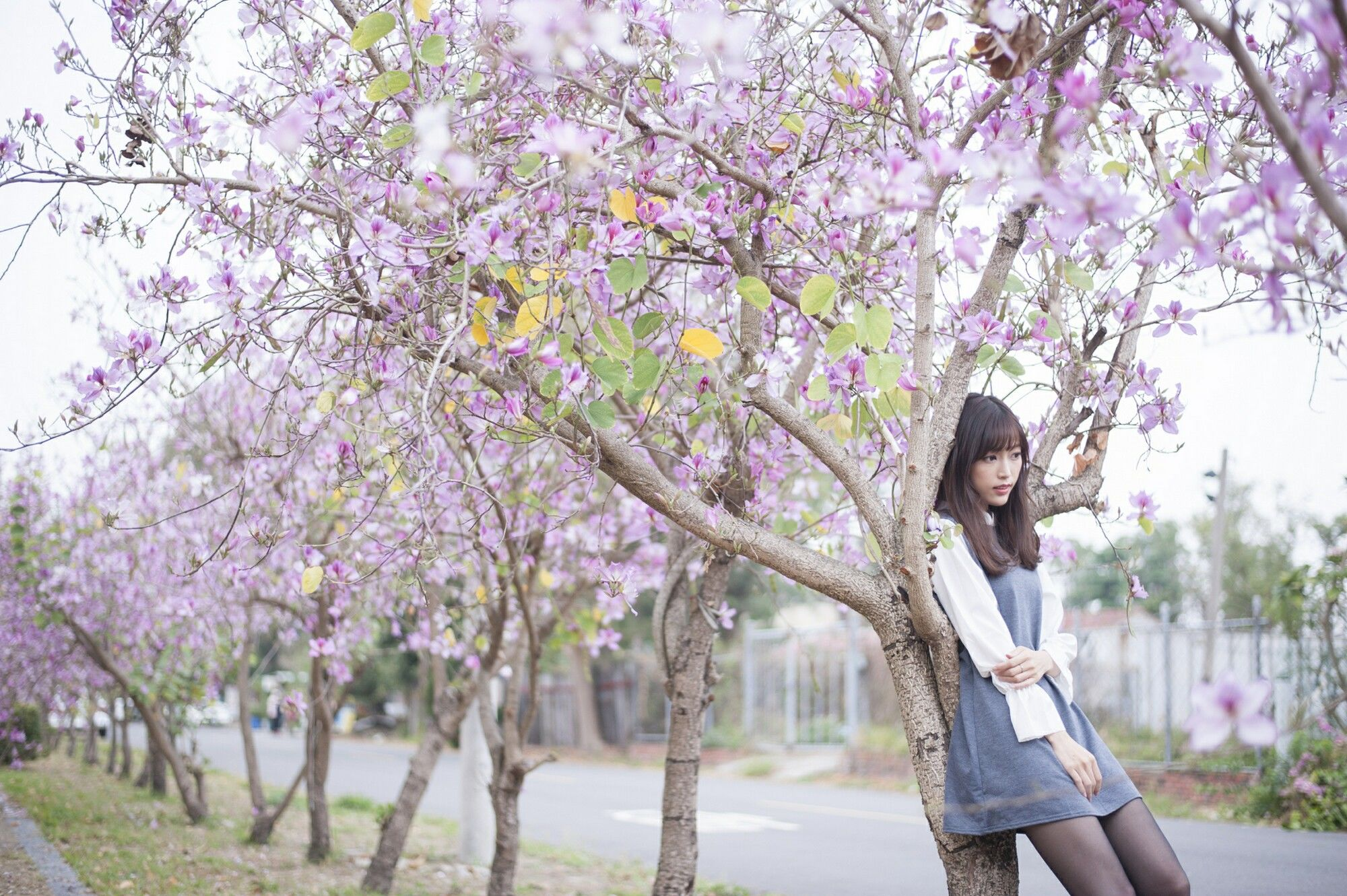 VOL.1551 [台湾正妹]美腿唯美黑丝正妹:彭丽嘉(Lady憶憶)超高清个人性感漂亮大图(33P)
